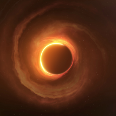 Poszukiwania czarnych dziur. Grudzień w Polsat Viasat Nature