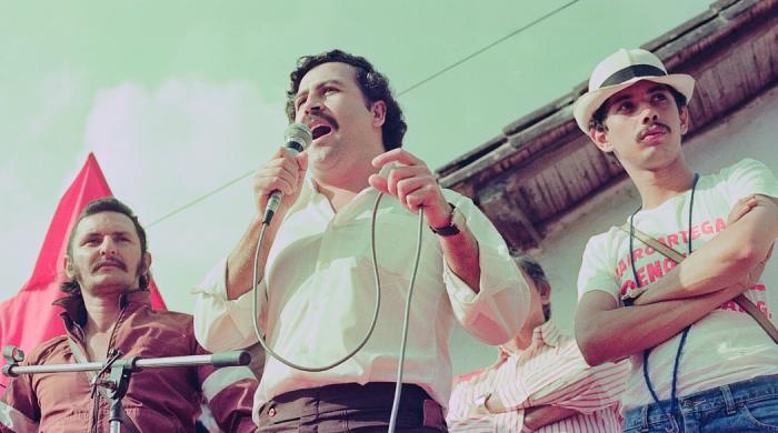 "Film dokumentalny ""Hipopotamy Escobara"" w marcu na kanale Polsat Viasat Nature"