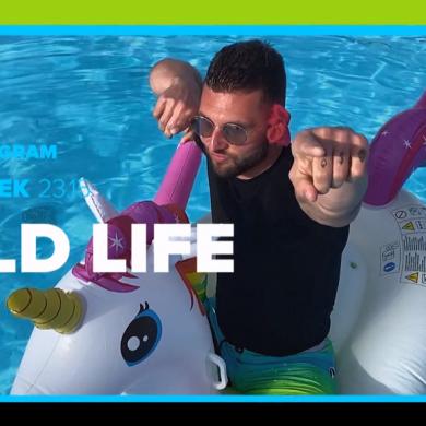 """Reality show """"Wild Life"""" również w TTV"""