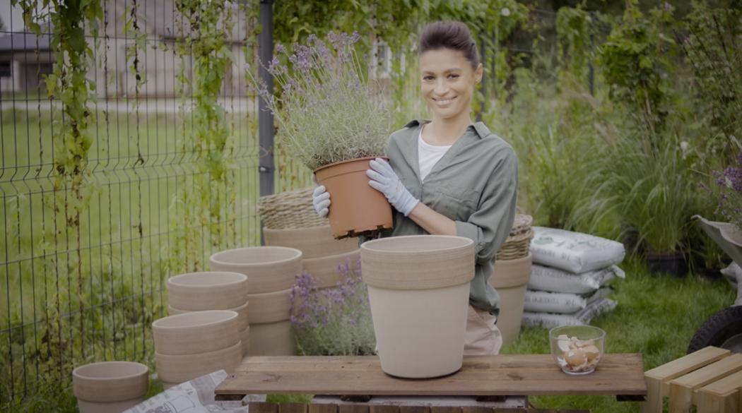 Rośliny dla zielonych